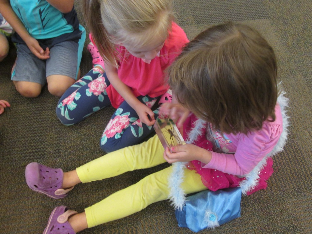 Two preschoolers, seated on the floor, look at a spider encased in plastic.
