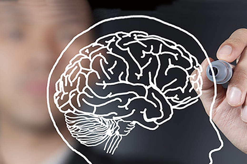 A man uses a marker to draw the outline of a head with a brain on a pane of glass.